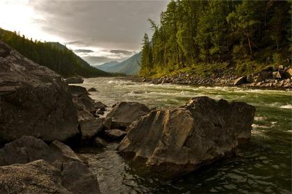 creek-593146_1920.jpg