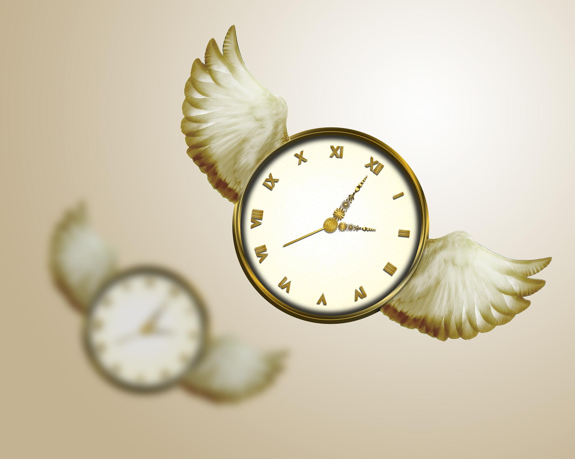 time-flies-2470848_1920.jpg