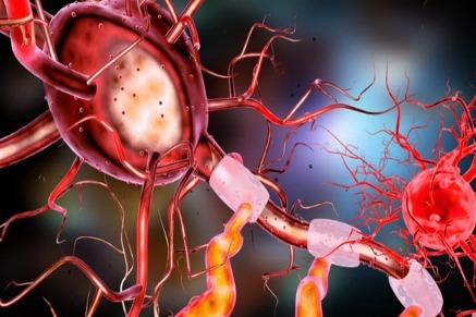 neuron-3567980_1920.jpg